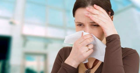 Alleviate Spring Allergies with an Air Purifier Picture